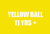 yellowballbeckweb